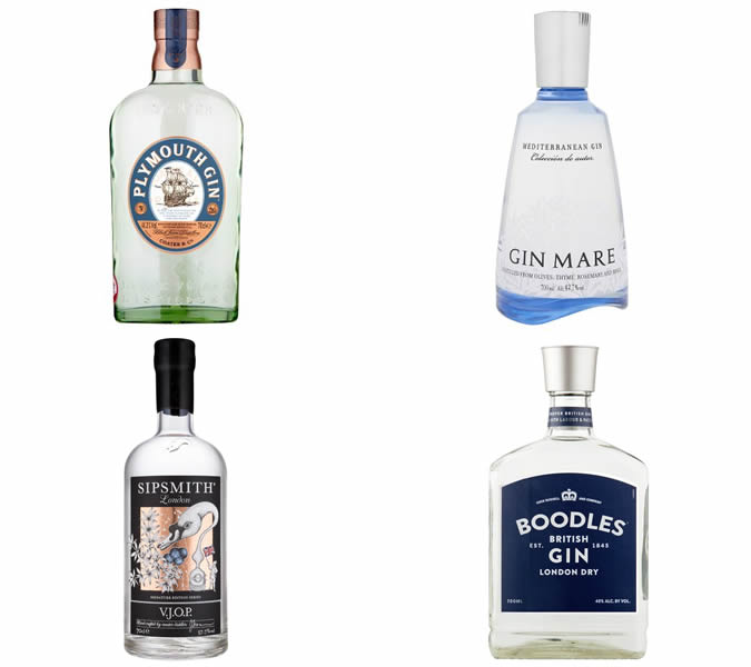 The best gins for a martini
