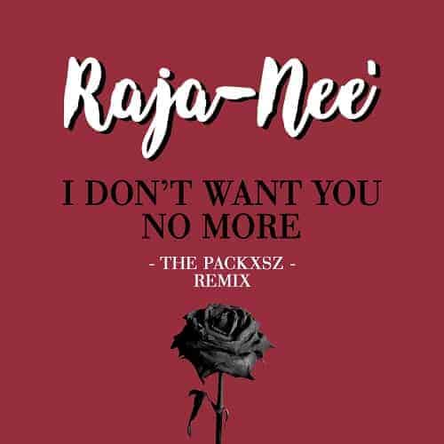 Raja-Nee - I Dont Want You No more (The Packxsz Remix) -cover art-
