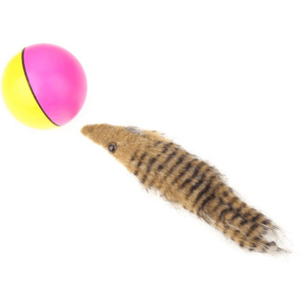 Beaver Ball Pet Toy 3