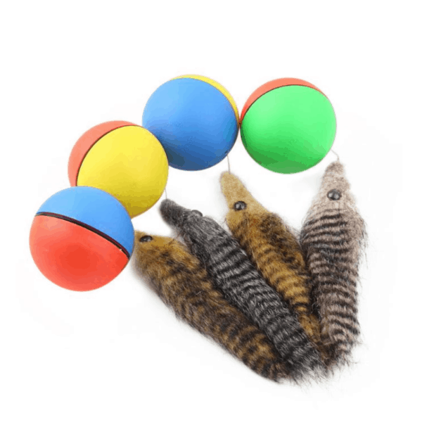 Beaver Ball Pet Toy 2