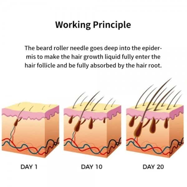 The Beard Growth Kit 2