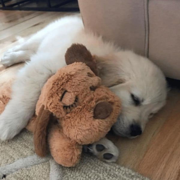 SNUGGLE-PUP FOR PETS  2