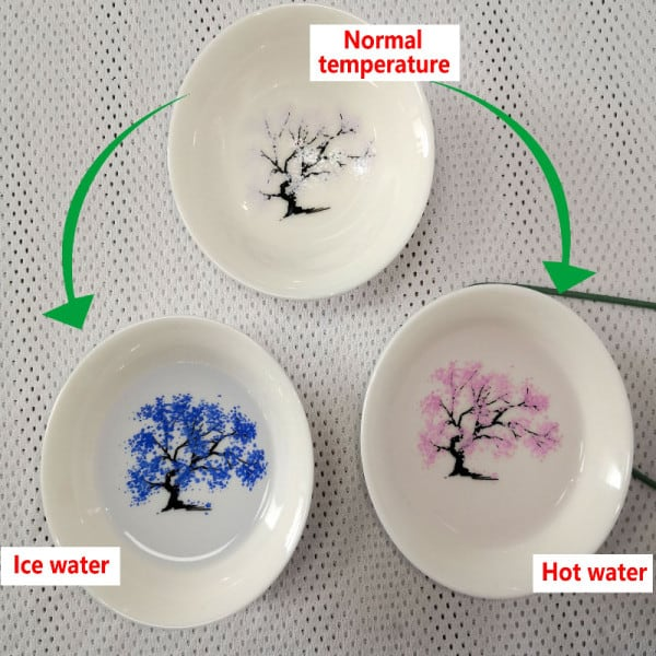 Japanese Magic Sakura Cup Cold Temperature Color Changing Flower display Sake Cup Ceramic Kung fu Tea Cup Tea Bowl 5